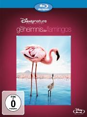 das-geheimnis-der-flamingos-blu-ray