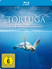 Tortuga_Steelb_BD_outside_divided_rz.indd
